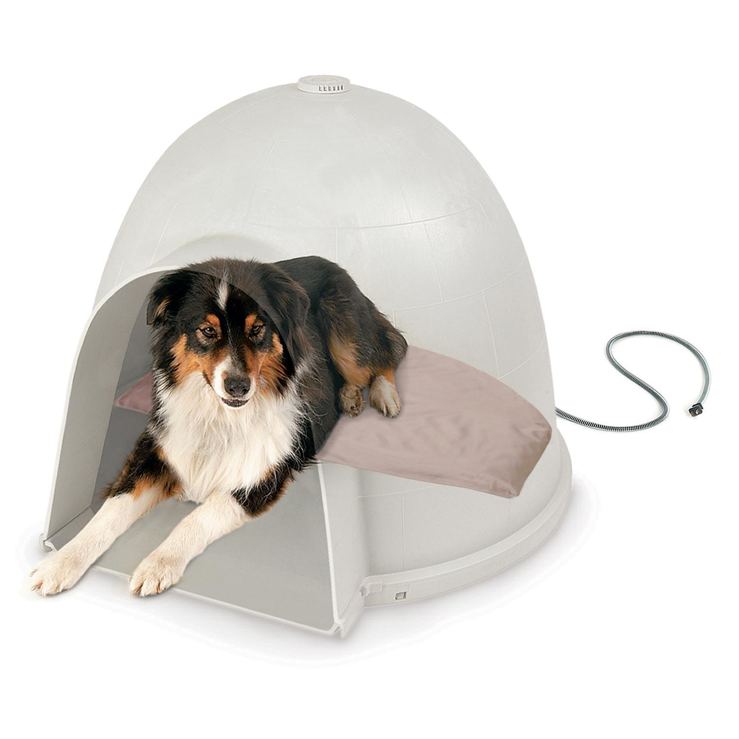Amazoncom Kh Pet Products Lectro Soft Igloo Style Outdoor Heated