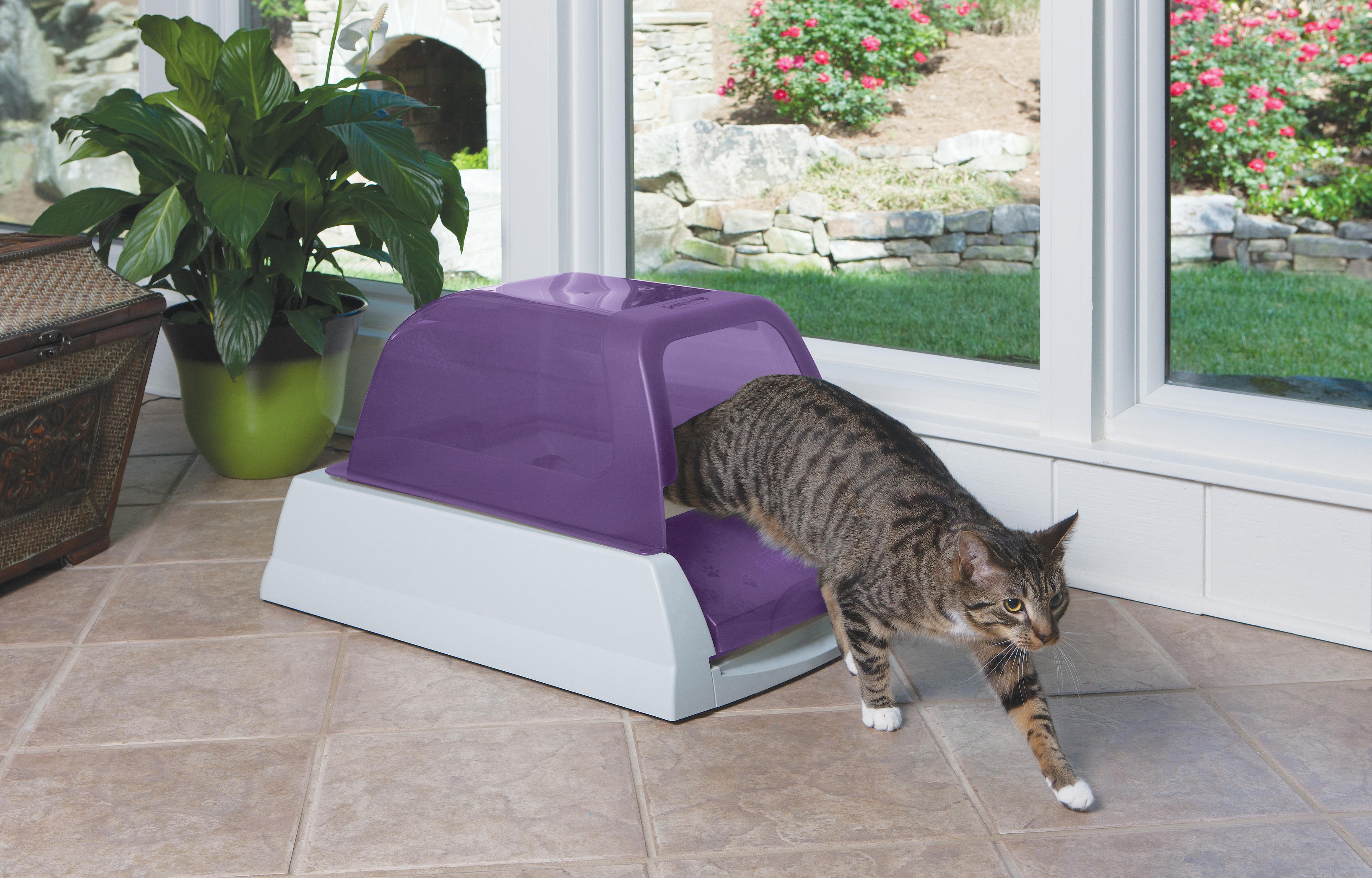 view larger - Scoopfree Litter Box