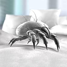 Amazon Com Allersoft 100 Percent Cotton Bed Bug Dust