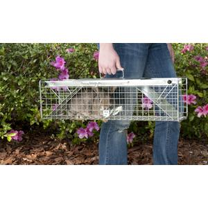 Amazon.com : Havahart 1030 Live Animal Two-Door Rabbit