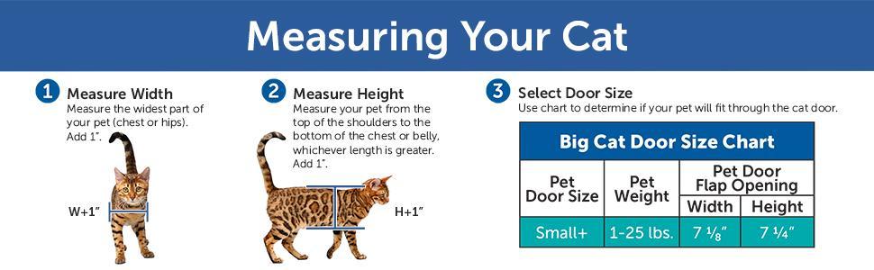Amazon Com Petsafe Big Cat 4 Way Locking Cat Door