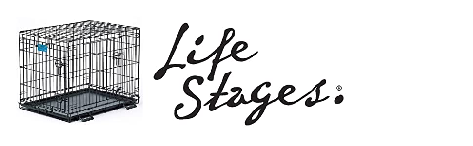 LifeStages Logo