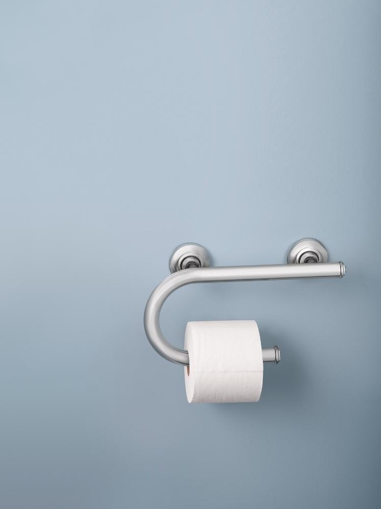 Moen LR2352DCH Toilet Paper Holder with Grab Bar, Chrome - Shower ...