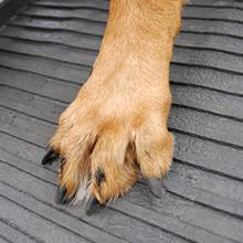 PetStep Rubber Surface