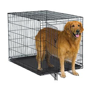 42in New World Crate with Dog