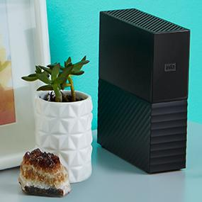 Buy Western Digital Hard Drive WDBBGB0080HBK I Redonstore.com