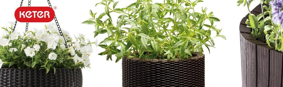 Keter Garden Flower Planters Pots RAised Elevated garden beds patio