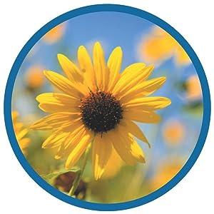 air filters,best air purifier,carbon air purifier,large room air purifier,germ guardian filter