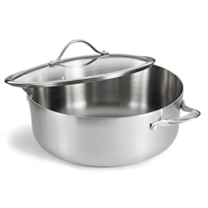 Contemporary Stainless Steel 8-Quart Covered Dutch Oven