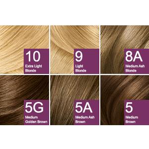 Clairol Age Defy Permanent Hair Dye 8G Medium Golden
