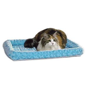 Cat on Fashion Blue Bed