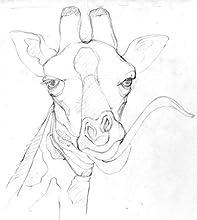 giraffe, creature features, art, sketch