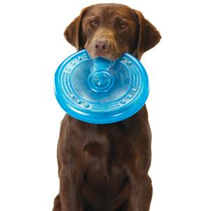 petstages dog toys, fun dog toys