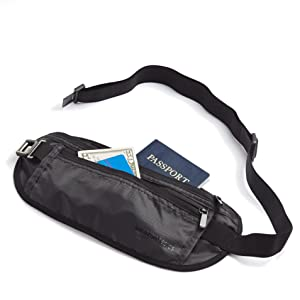 AmazonBasics Travel Money Belt