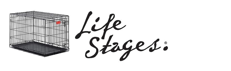 LifeStages Logo