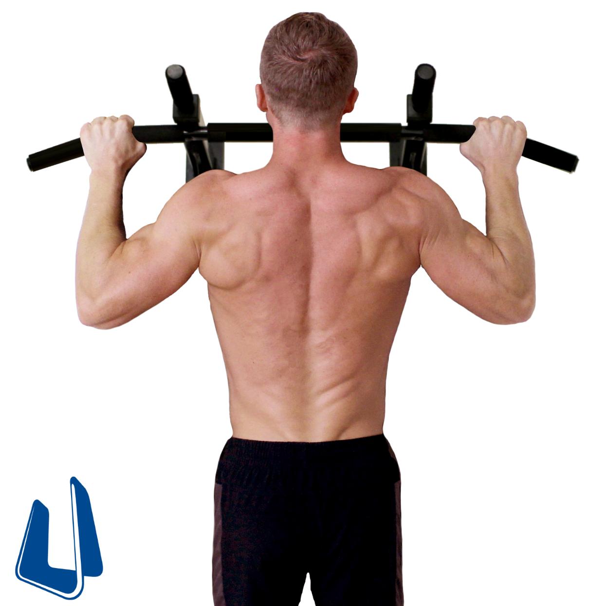 Amazon Com Ultimate Body Press Wall Mount Pull Up Bar