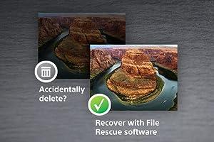 File Rescue Software
