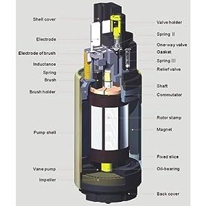Autobest F298S Fuel Pump Strainer Fits Ford E150 E250 Econoline Center Tank