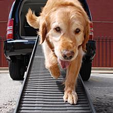 PetStep Pet Ramp Capacity