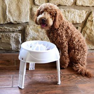 Outward Hound 3in1 Up Feeder Elevated Raised Slow Feed Prevent Bloat Dog Bowl Pink Kyjen 51011