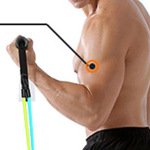 Resistance Bands for Arm
