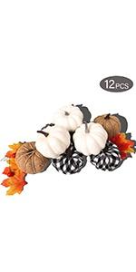Set of 12 Assorted Pumpkin Decorations