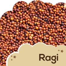 Ragi (Finger Millet):