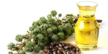 castor oil pimento oil tea tree neem oil coconut water