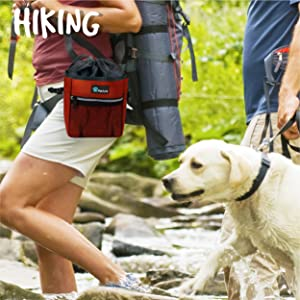 dog hiking bag with collapsible water bowl