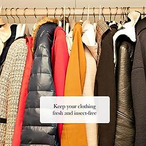 CamPure Camphor Cone air freshener car mosquito repellent kampoor closet preserve clothes