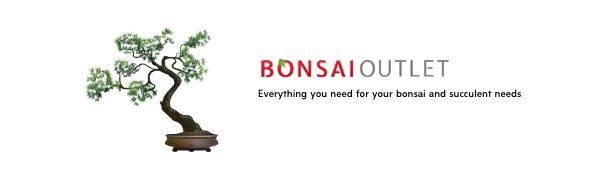 Bonsai Outlet