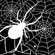 Spider Web print
