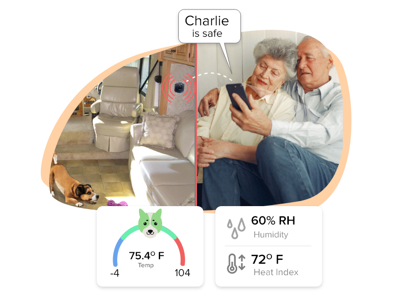 Wireless Temperature & Humidity Monitor