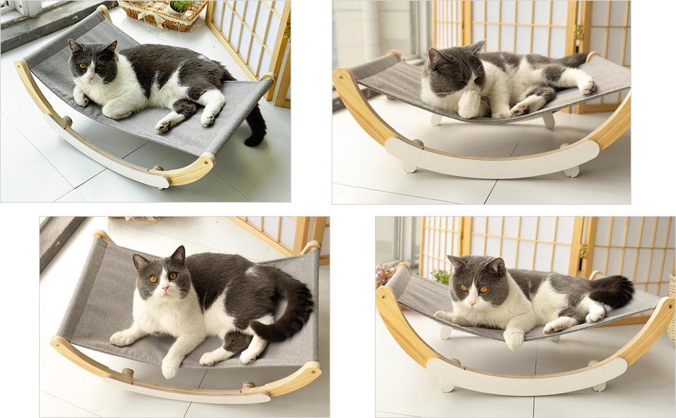 cat perch for indoor cats