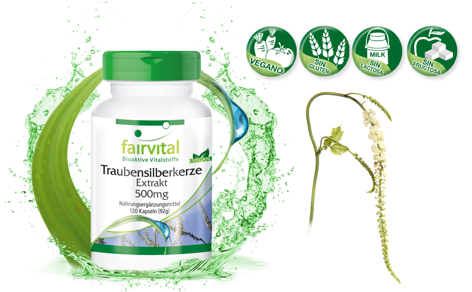 Cohosh Negro cápsulas - Cimifuga - 120 cápsulas vegetarianas - Sin aditivos - 500mg - ¡Calidad Alemana garantizada!