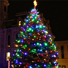 Avoalre Luz Navidad 40M 300 LED Guirnalda Luces Cadena de Luces 8 Modos 4 Colores Impermeable IP44 con Pilas para Exterior Interior Fiesta Boda Jard/ín Casa Rosa//Amarillo//Azul//Verde