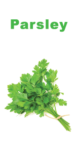 Organic Parsley seeds for planting - Nature's Blossom herb garden grow kit - indoor gardening set