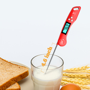thermometer food