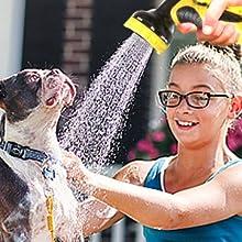 pets washing