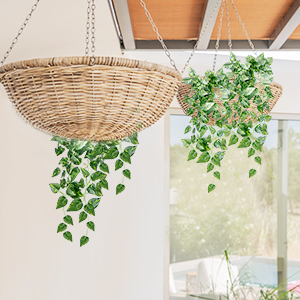 Amazon Com Yatim 90 Cm Money Ivy Vine Artificial Plants Greeny Chain Wall Hanging Leaves For Home Room Garden Wedding Garland Outside Decoration Pack Of 2 Furniture Decor