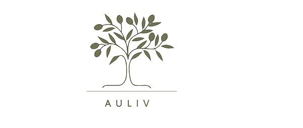 auliv logo