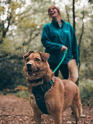 embark petsdog harnesses, dog harness no pull, easy walk harness, harness for dogs, dog harness for