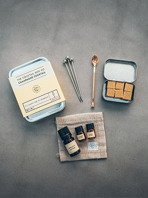 cocktail kit travel accessories bar spoon picks bitters sugar