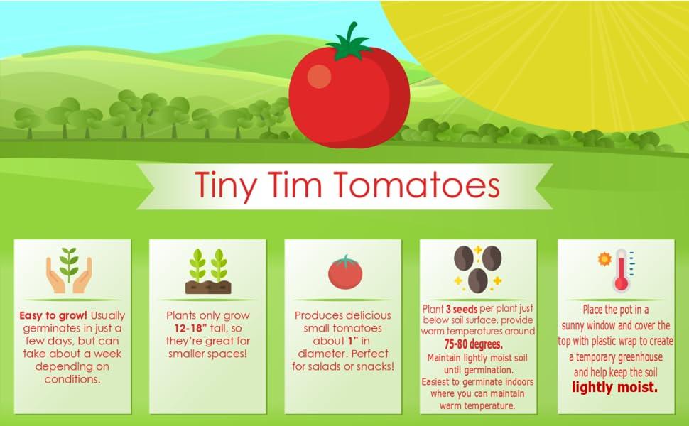 Tiny Tim Infographic