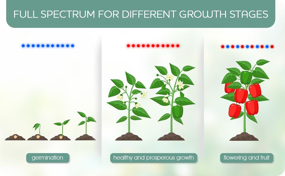 full spectrum led grow light for plant from seedling to harvest