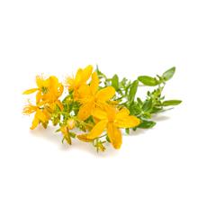 Solaray St John's Wort Aerial Extract 300 mg, Once Daily Mood & Brain Health  0.3% Hypericin 60ct