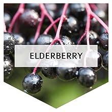 Elderberry + Vitamin C + Vitamin D3 + Zinc
