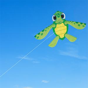 Chipmunkk Turtle Kite