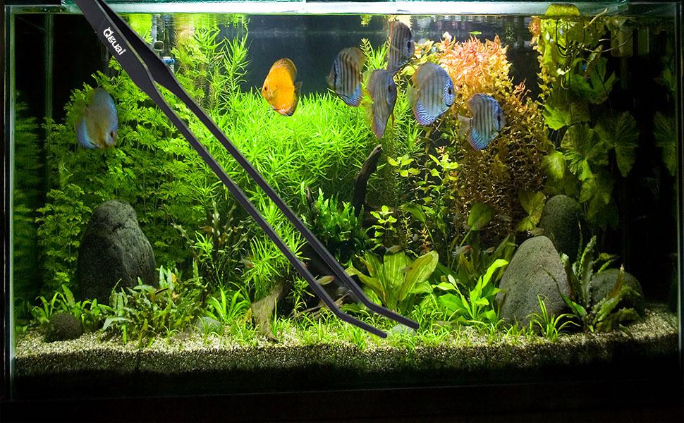 Planted Aquarium Tools