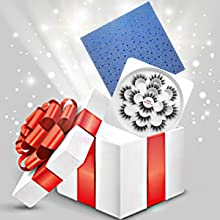 Faux Mink Lashes Gift Set
